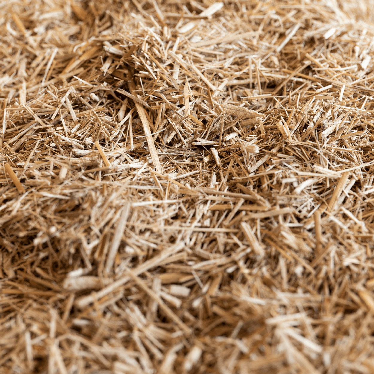 Miscanthus horse bedding finely chopped