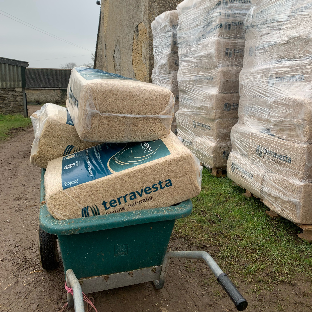 wheel barrow carry Miscanthus horse bedding to stable